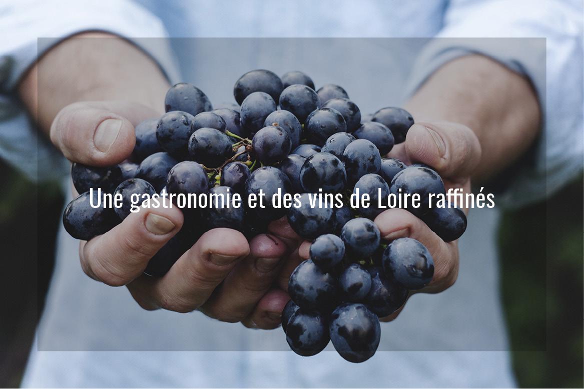 Séjour de luxe en val de Loire, Voyage haut de gamme en vallée de la Loire
