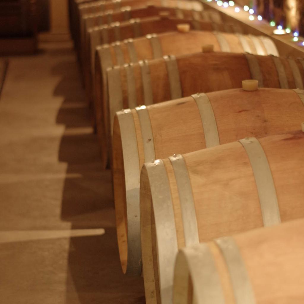 domaine bois moze vin degustation