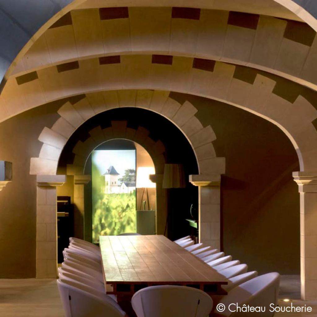 vigne domaine viticole layon séjour œnologique