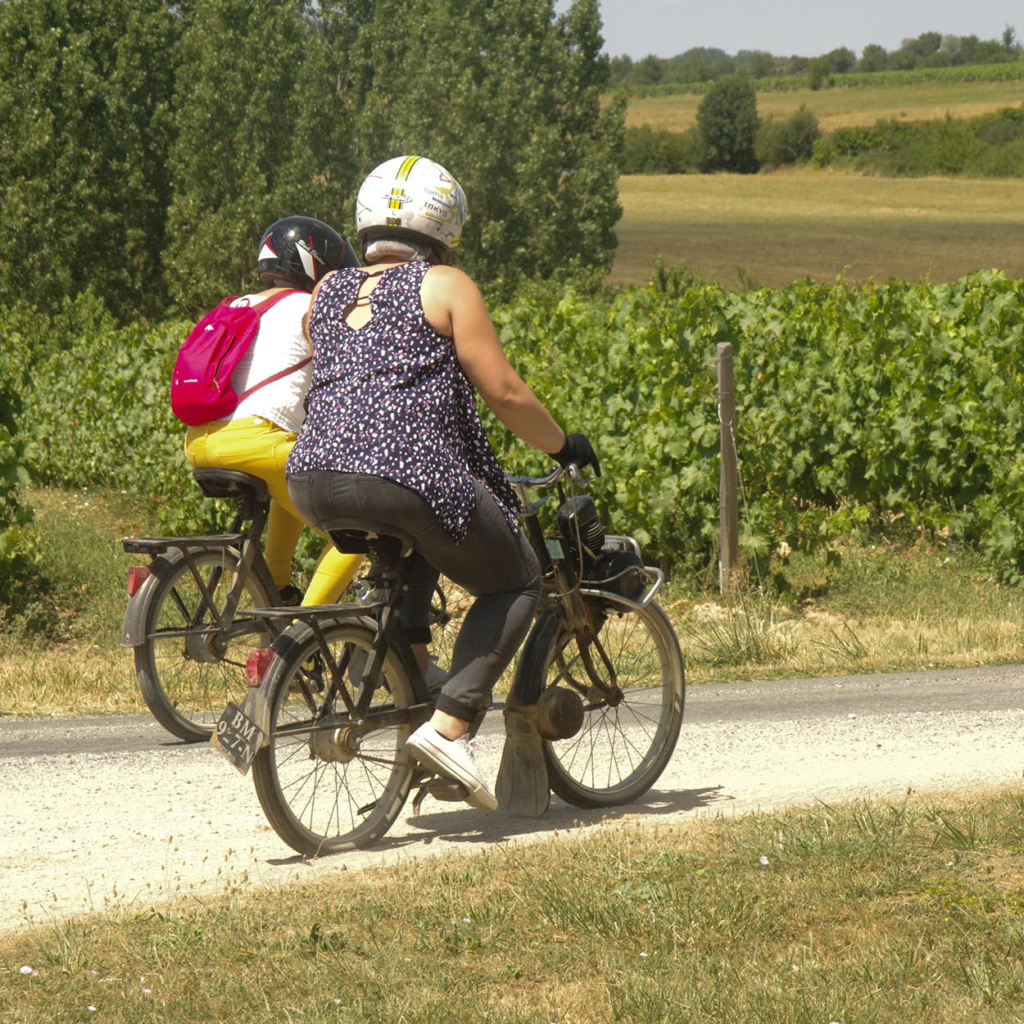 wine-and-solex-week-end-insolite-anjou