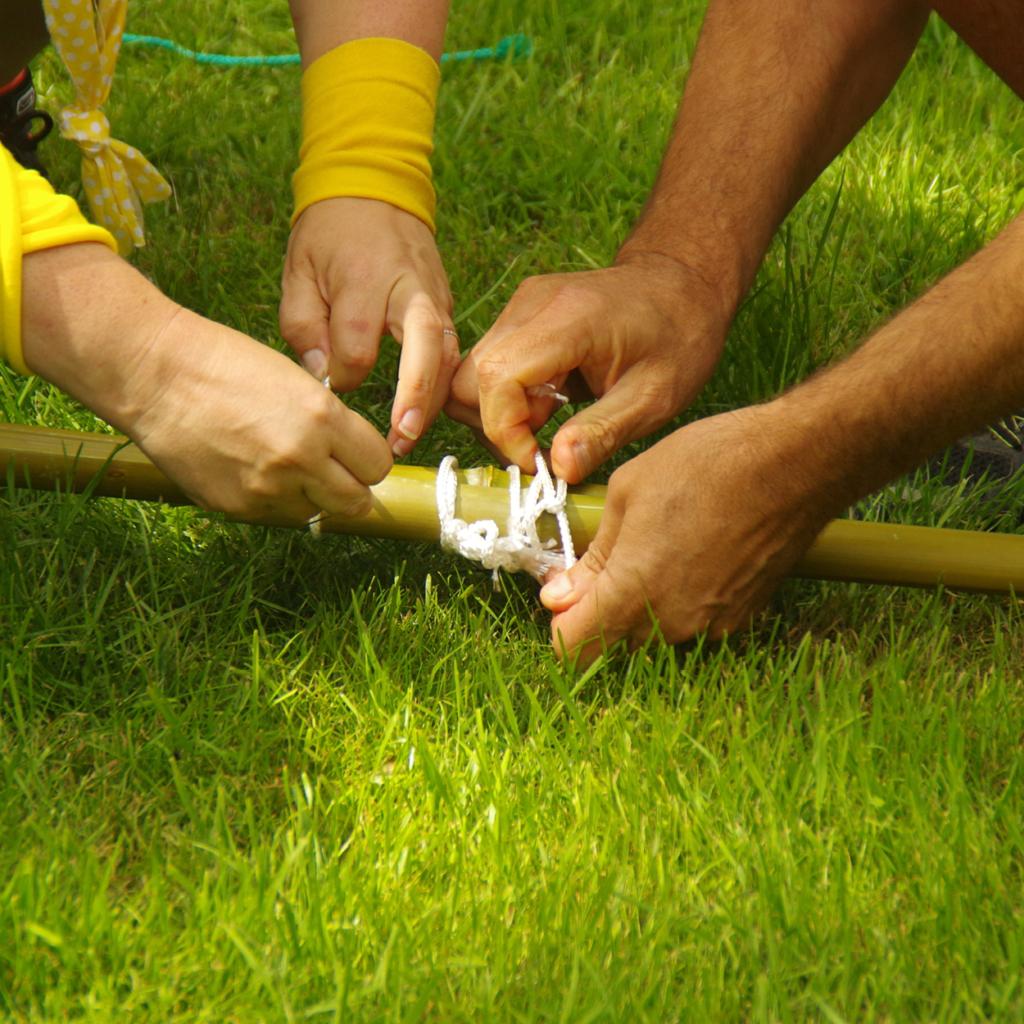 olympiades activite ecologie