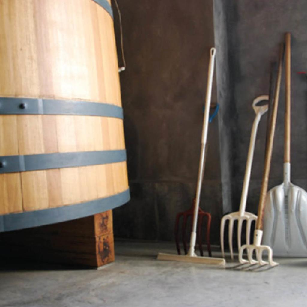 seminaire dans les vignes savennieres